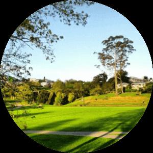 Grey Lynn Park - Dog Parks